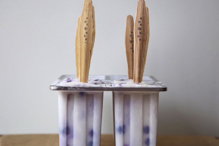 Ginger Infused Creamy Coconut and BlueberryPops 1