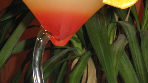 Bikini Martini 1