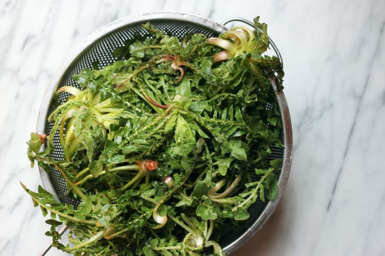Acquacotta (Wild Greens and BreadSoup)