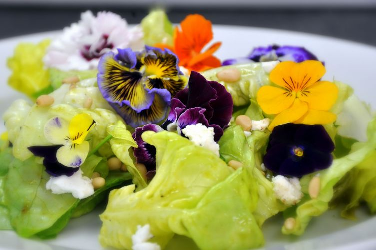Spring Bouquet Salad with Basil-Chive Vinaigrette, Chèvre, and Pine Nuts 1