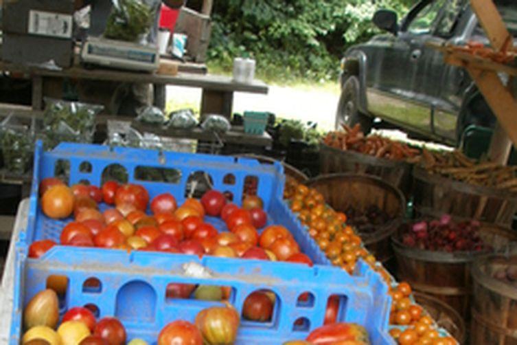 Heirloom Tomato and Mango Lassi with GroundSumac