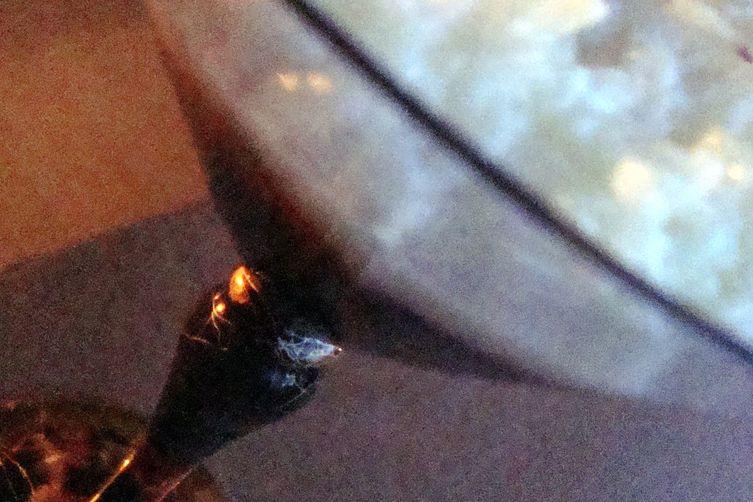 Rose Cardamom RicePudding 1